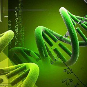 Biology Molecules Image